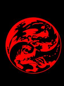 Практика Дракон-тигр